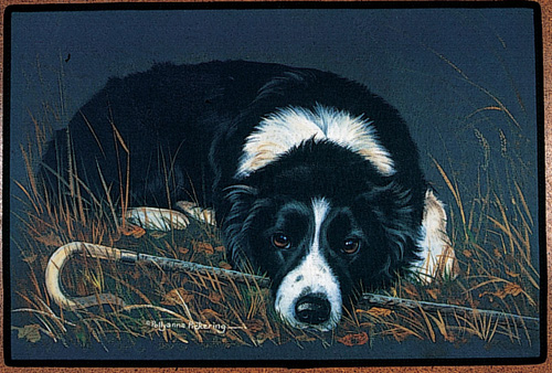 DYWANIK ART. Border Collie.